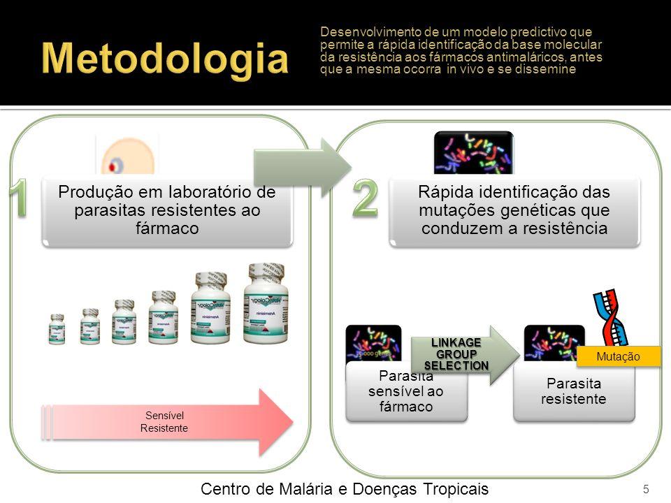 Centro de Malária e Doenças Tropicais 5 Sensível Resistente Produção em laboratório de parasitas resistentes ao fármaco Rápida identificação das mutaç