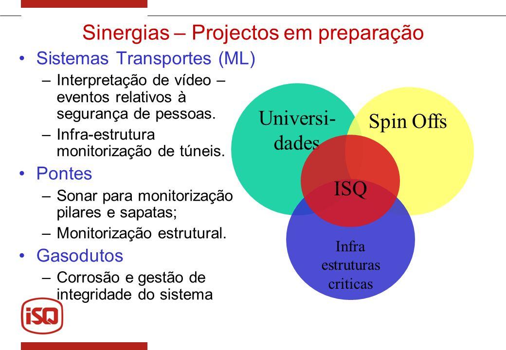 Sinergias – Projectos em preparação Sistemas Transportes (ML) –Interpretação de vídeo – eventos relativos à segurança de pessoas. –Infra-estrutura mon