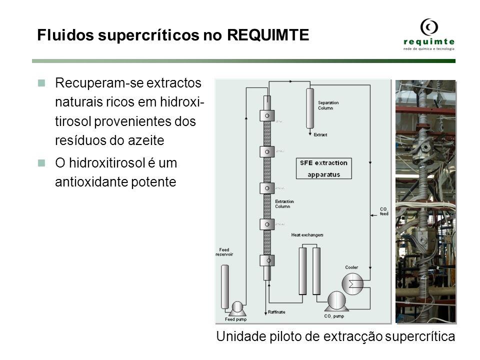 Fluidos supercríticos no REQUIMTE Recuperam-se extractos naturais ricos em hidroxi- tirosol provenientes dos resíduos do azeite O hidroxitirosol é um