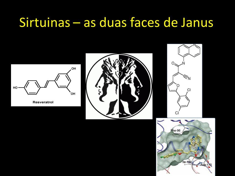 Sirtuinas – as duas faces de Janus