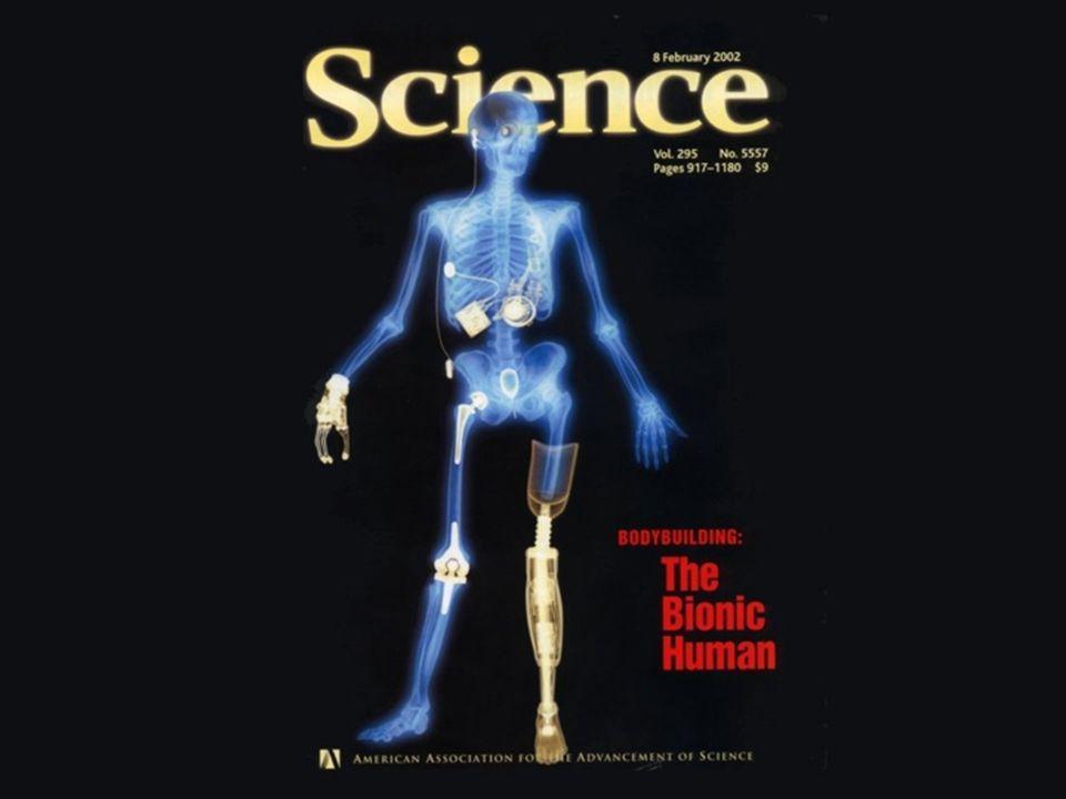 24 h 3 1 2 2 2 1- membrana celular 2- dentro do citoplasma 3- dentro do núcleo Vermelho – CHimi-ROX Rosa – ADN-Cy5 Azul – DAPI Verde – F-Actina Pires, L.