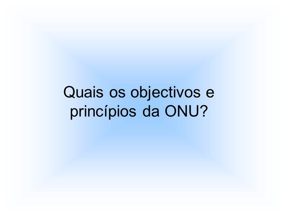 Quais os objectivos e princípios da ONU?