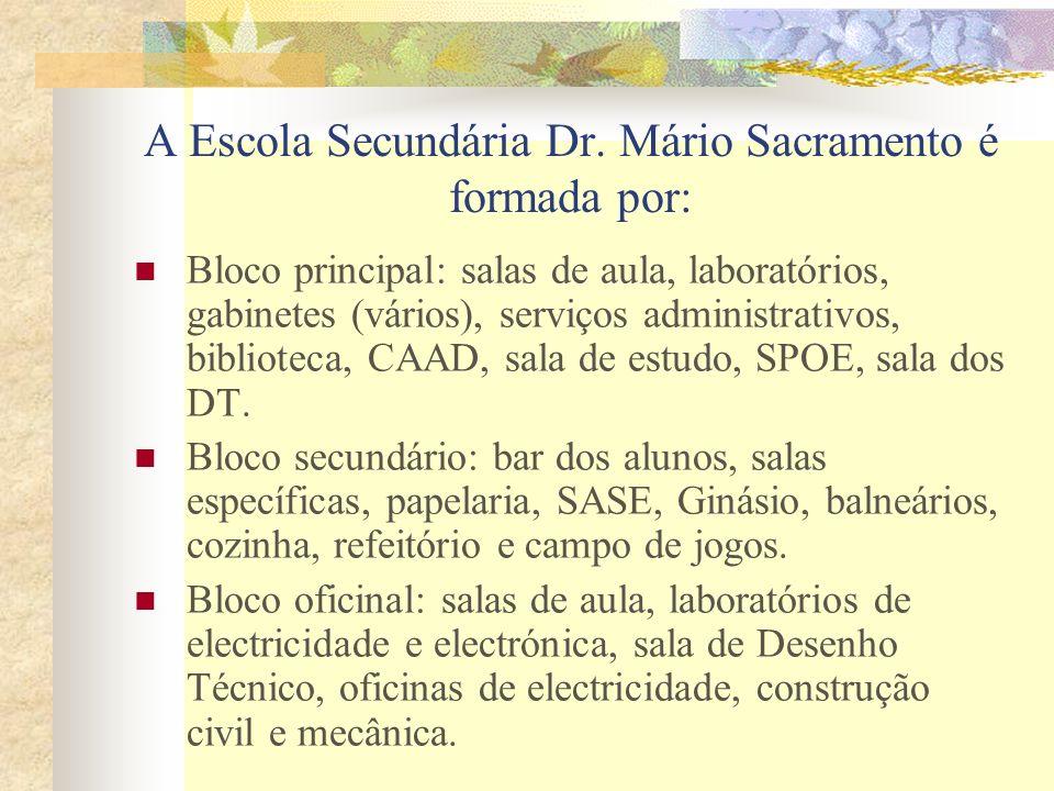 A Escola Secundária Dr. Mário Sacramento é formada por: Bloco principal: salas de aula, laboratórios, gabinetes (vários), serviços administrativos, bi