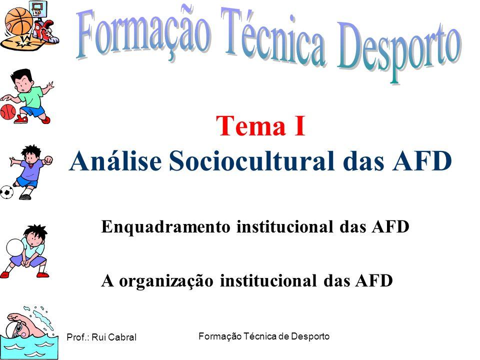 Prof.: Rui Cabral Formação Técnica de Desporto Tema I Análise Sociocultural das AFD Enquadramento institucional das AFD A organização institucional da