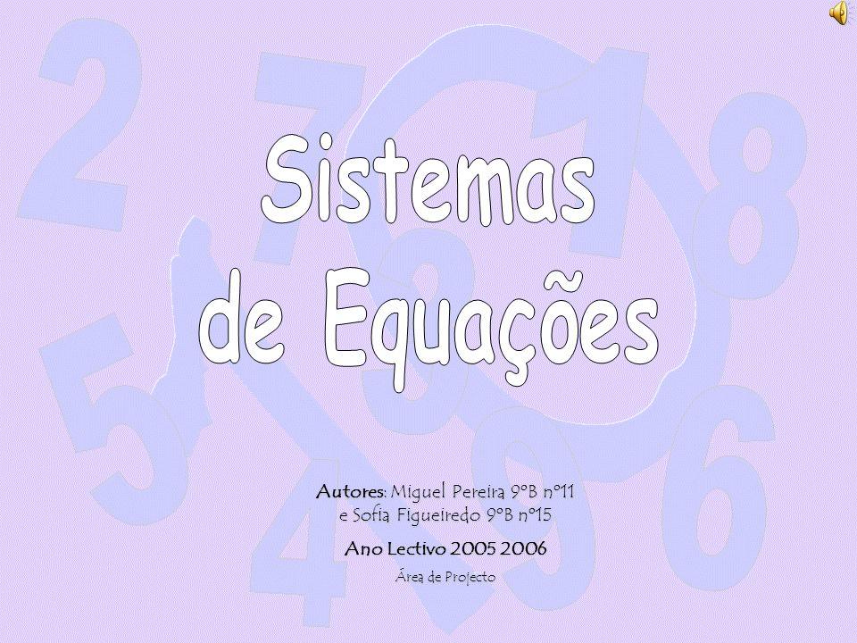 Autores: Miguel Pereira 9ºB nº11 e Sofia Figueiredo 9ºB nº15 Ano Lectivo 2005 2006 Área de Projecto