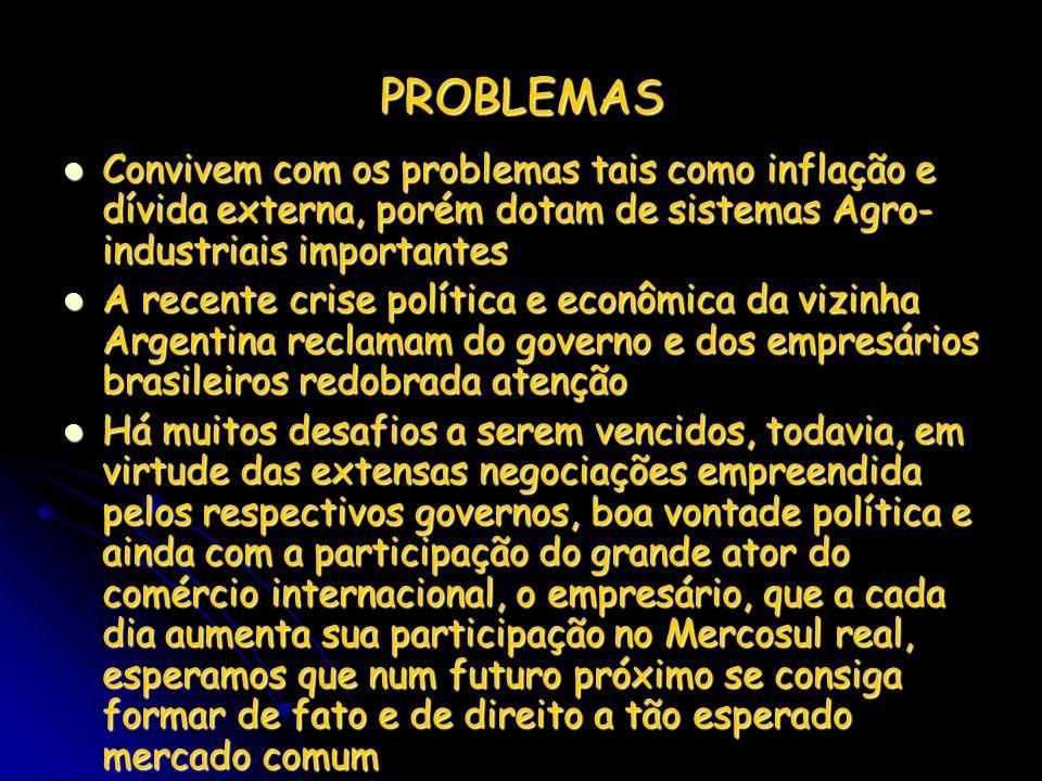 PROBLEMAS Convivem com os problemas tais como inflação e dívida externa, porém dotam de sistemas Agro- industriais importantes Convivem com os problem