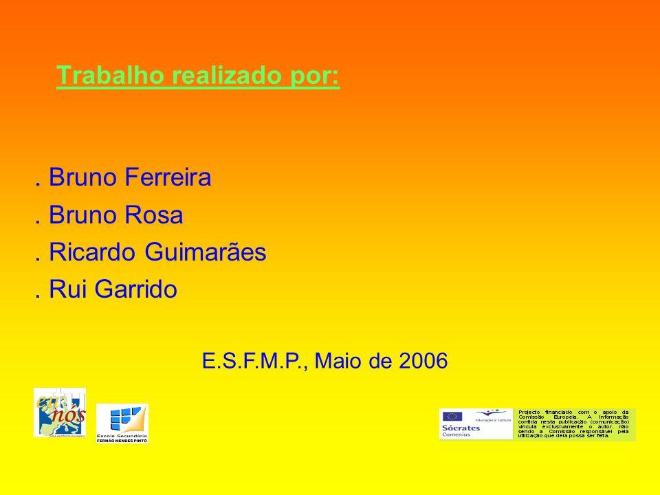 Trabalho realizado por:. Bruno Ferreira. Bruno Rosa. Ricardo Guimarães. Rui Garrido E.S.F.M.P., Maio de 2006