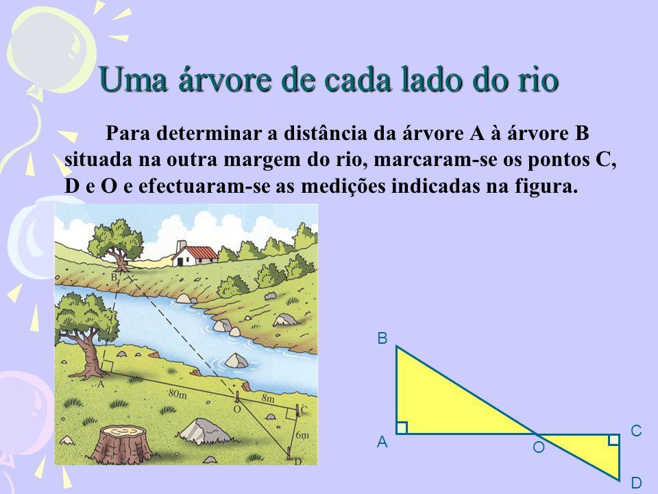 Uma árvore de cada lado do rio Para determinar a distância da árvore A à árvore B situada na outra margem do rio, marcaram-se os pontos C, D e O e efe