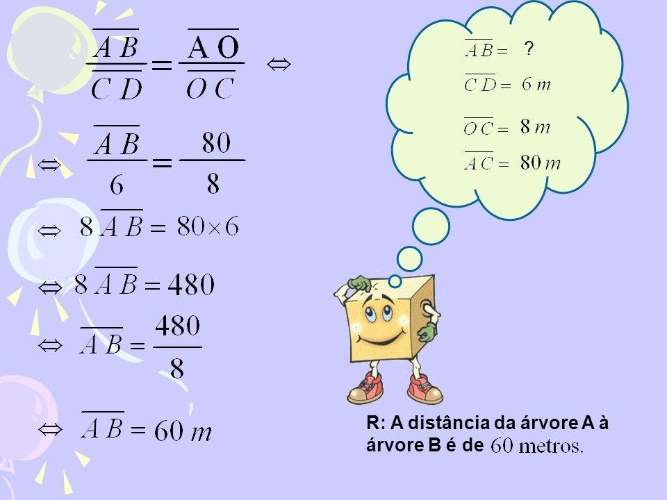 R: A distância da árvore A à árvore B é de ?