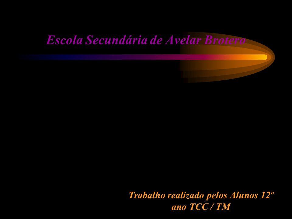Trabalho realizado pelos Alunos 12º ano TCC / TM Escola Secundária de Avelar Brotero