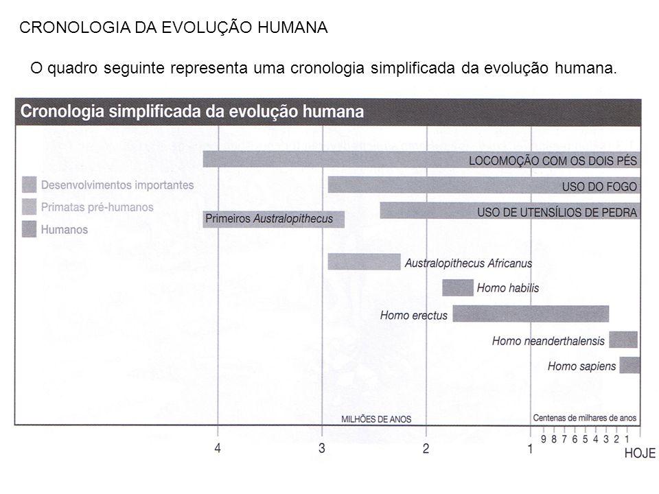 CRONOLOGIA DA EVOLUÇÃO HUMANA O quadro seguinte representa uma cronologia simplificada da evolução humana.