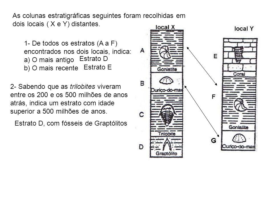 As colunas estratigráficas seguintes foram recolhidas em dois locais ( X e Y) distantes. 1- De todos os estratos (A a F) encontrados nos dois locais,