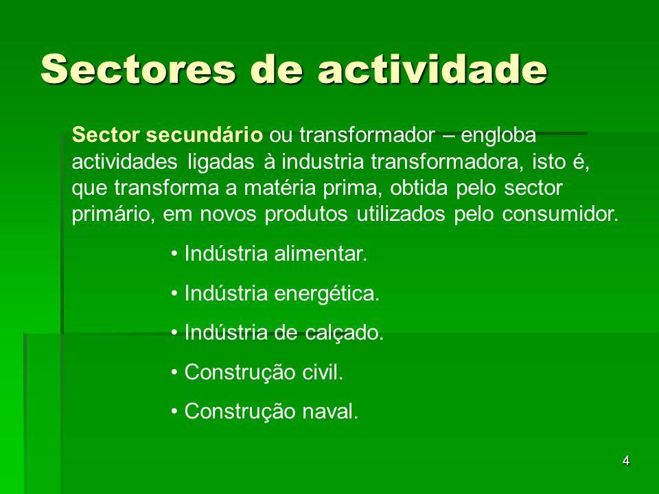 4 Sectores de actividade Sector secundário ou transformador – engloba actividades ligadas à industria transformadora, isto é, que transforma a matéria