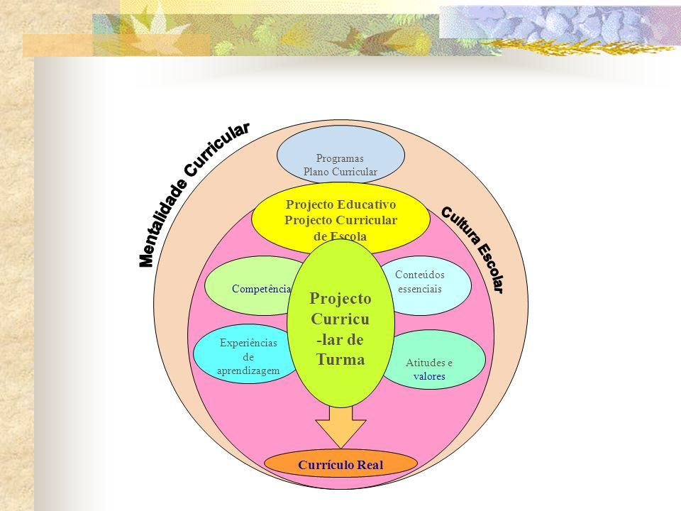 Programas Plano Curricular Projecto Educativo Projecto Curricular de Escola Experiências de aprendizagem Conteúdos essenciaisCompetências Atitudes e valores Projecto Curricu -lar de Turma Currículo Real