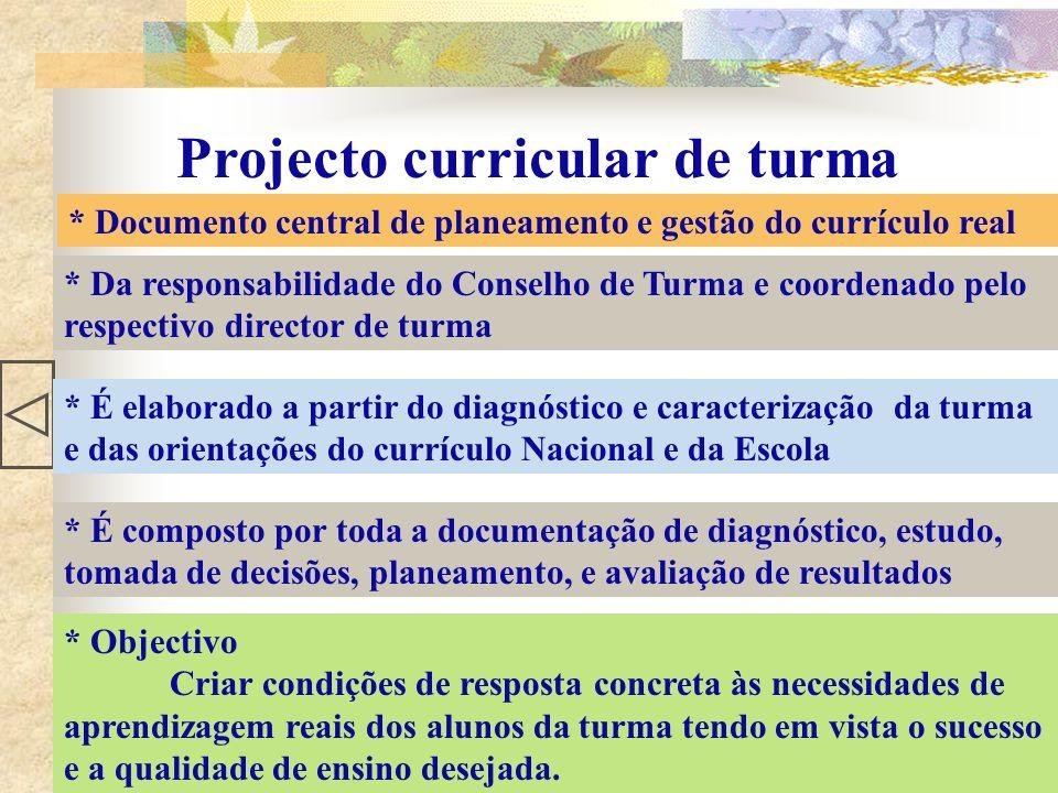 Projecto curricular de turma * Documento central de planeamento e gestão do currículo real * Da responsabilidade do Conselho de Turma e coordenado pel