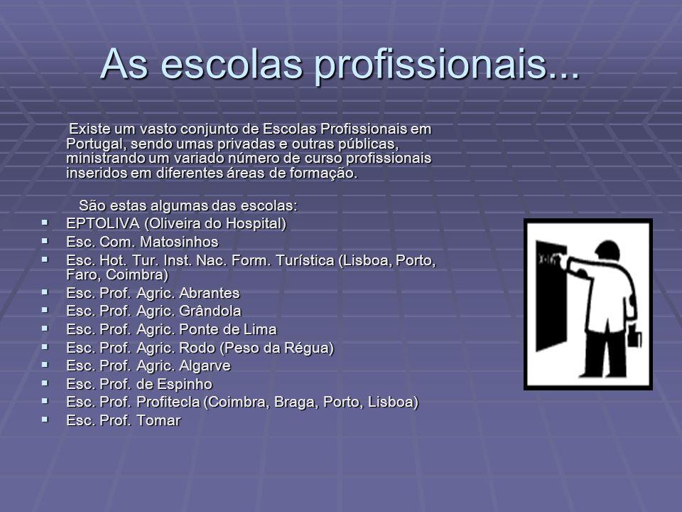 As escolas profissionais... Existe um vasto conjunto de Escolas Profissionais em Portugal, sendo umas privadas e outras públicas, ministrando um varia