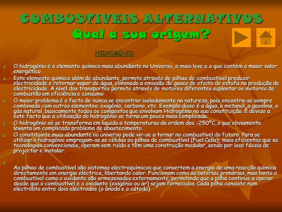COMBUSTIVEIS ALTERNATIVOS Qual a sua origem.