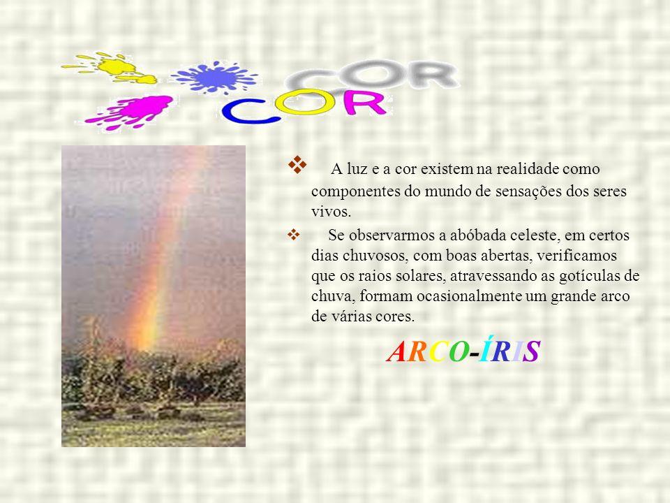 A luz e a cor existem na realidade como componentes do mundo de sensações dos seres vivos. Se observarmos a abóbada celeste, em certos dias chuvosos,