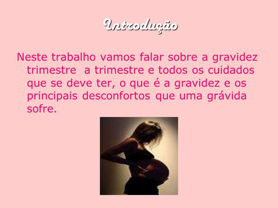 Introdução Neste trabalho vamos falar sobre a gravidez trimestre a trimestre e todos os cuidados que se deve ter, o que é a gravidez e os principais d