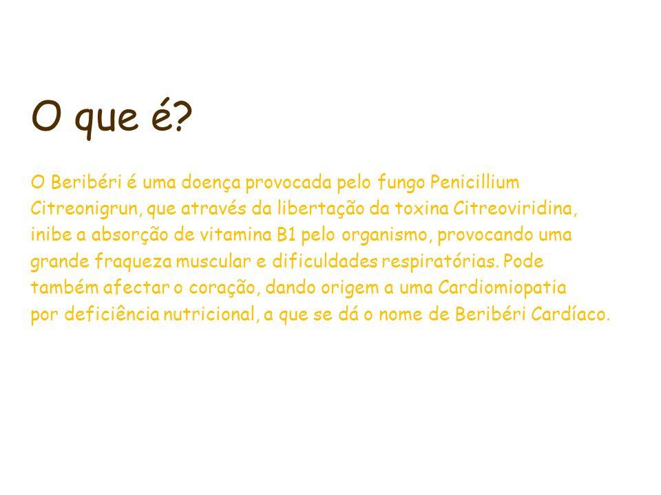 O que é? O Beribéri é uma doença provocada pelo fungo Penicillium Citreonigrun, que através da libertação da toxina Citreoviridina, inibe a absorção d