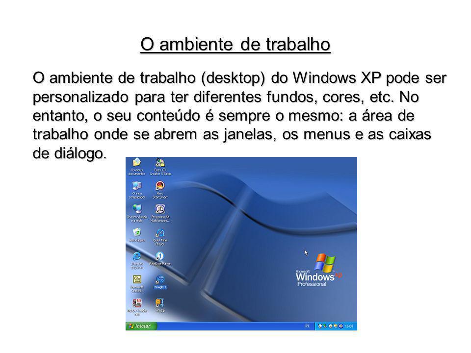 O ambiente de trabalho (desktop) do Windows XP pode ser personalizado para ter diferentes fundos, cores, etc. No entanto, o seu conteúdo é sempre o me
