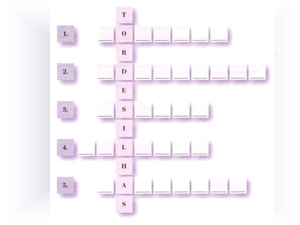 Ao decifrar o enigma, formas uma palavra ligada aos Descobrimentos