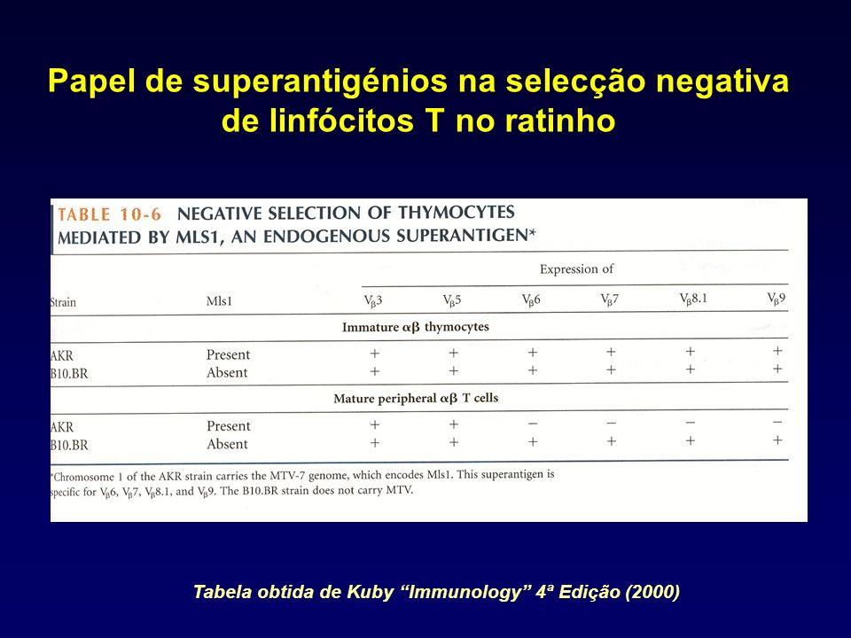 Papel de superantigénios na selecção negativa de linfócitos T no ratinho Tabela obtida de Kuby Immunology 4ª Edição (2000)