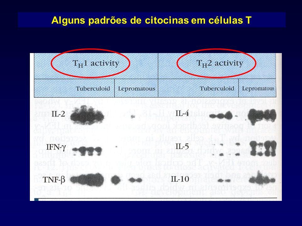 Alguns padrões de citocinas em células T