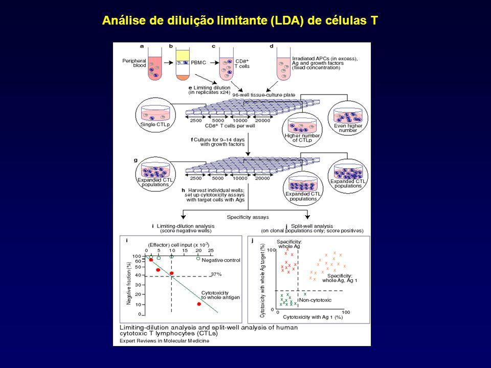 Análise de diluição limitante (LDA) de células T