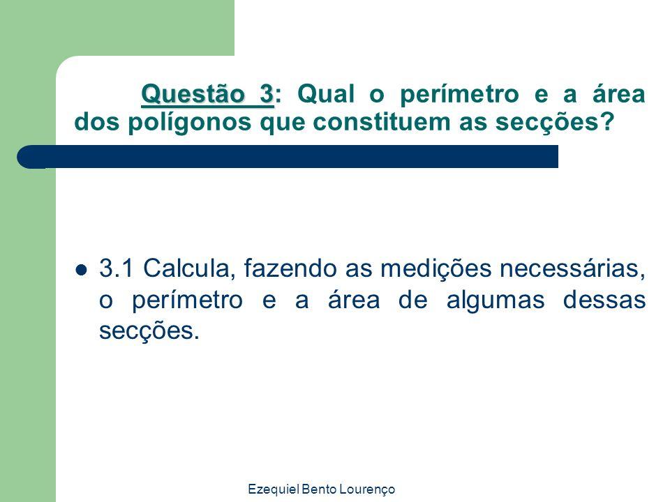 Ezequiel Bento Lourenço Questão 3 Questão 3: Qual o perímetro e a área dos polígonos que constituem as secções? 3.1 Calcula, fazendo as medições neces