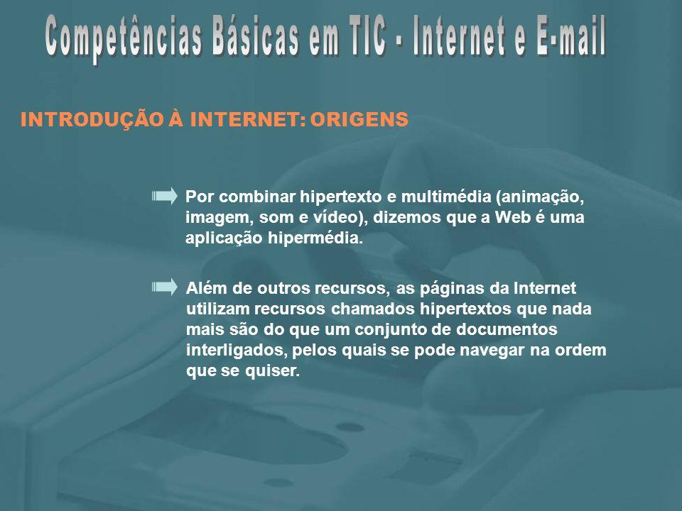 Surgem também, os provedores de acesso à Internet (ISP – Internet Service Providers), empresas comerciais que vendem aos clientes o meio de navegar na Internet.