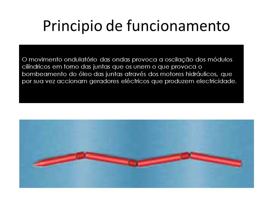Principio de funcionamento O movimento ondulatório das ondas provoca a oscilação dos módulos cilíndricos em torno das juntas que os unem o que provoca