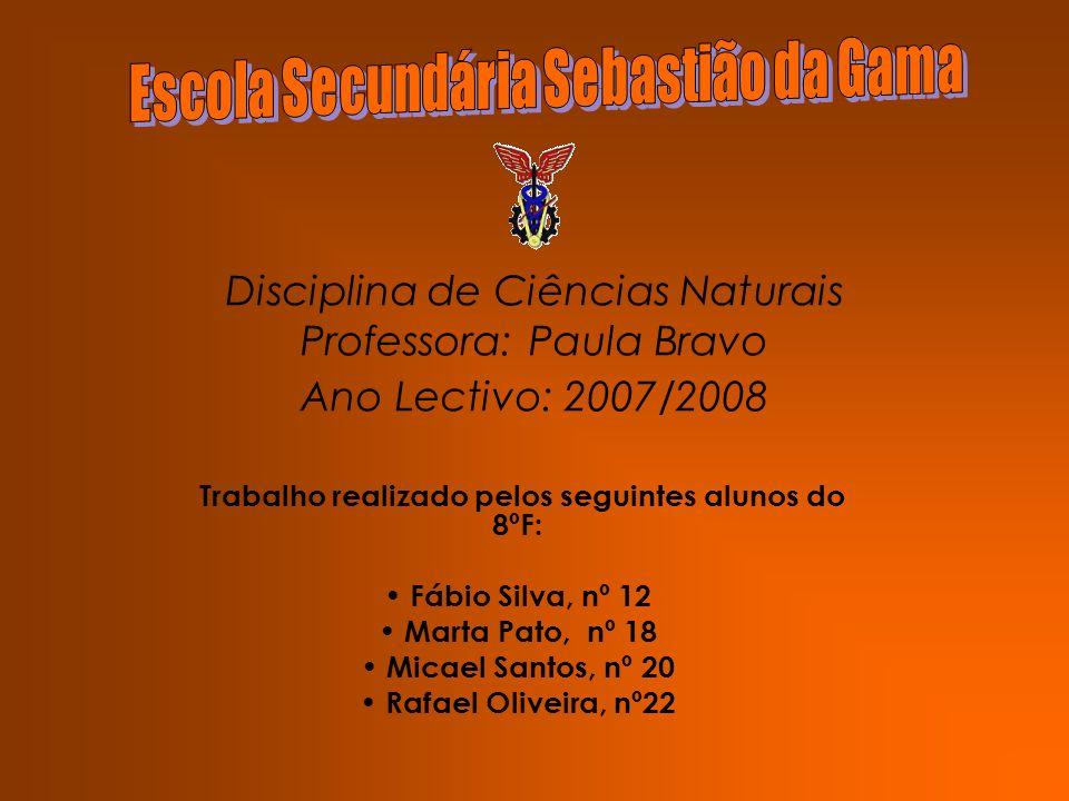 Disciplina de Ciências Naturais Professora: Paula Bravo Ano Lectivo: 2007/2008 Trabalho realizado pelos seguintes alunos do 8ºF: Fábio Silva, nº 12 Ma