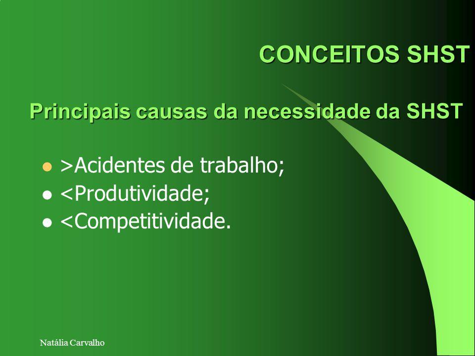 Natália Carvalho CONCEITOS SHST >Acidentes de trabalho; <Produtividade; <Competitividade. Principais causas da necessidade da SHST