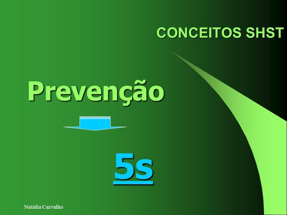 Natália Carvalho CONCEITOS SHST Prevenção 5s