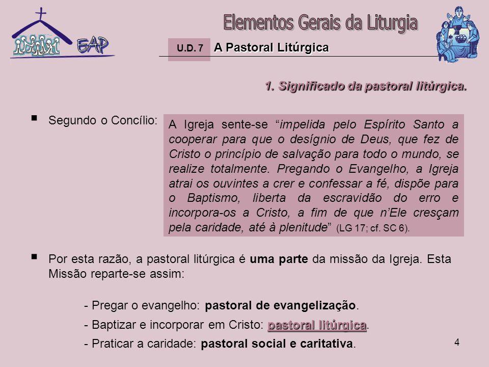 5 1.Significado da pastoral litúrgica.