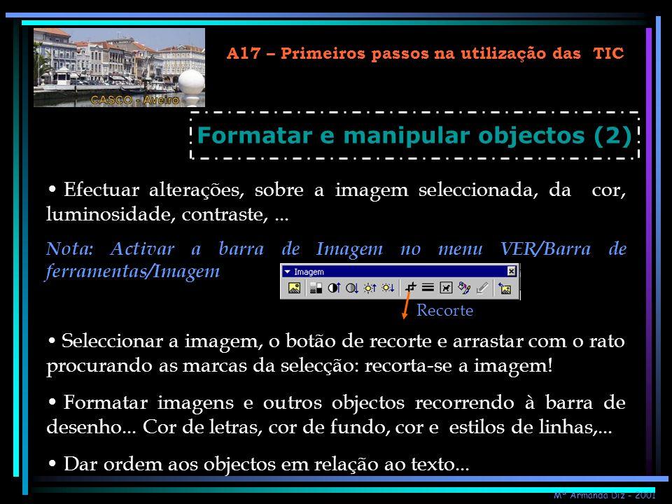 A17 – Primeiros passos na utilização das TIC Formatar e manipular objectos (2) Efectuar alterações, sobre a imagem seleccionada, da cor, luminosidade,