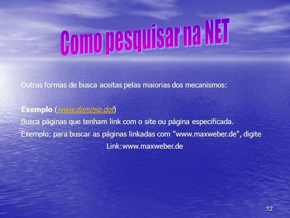 12 Outras formas de busca aceitas pelas maiorias dos mecanismos: Exemplo (www.domínio.dot)www.domínio.dot Busca páginas que tenham link com o site ou
