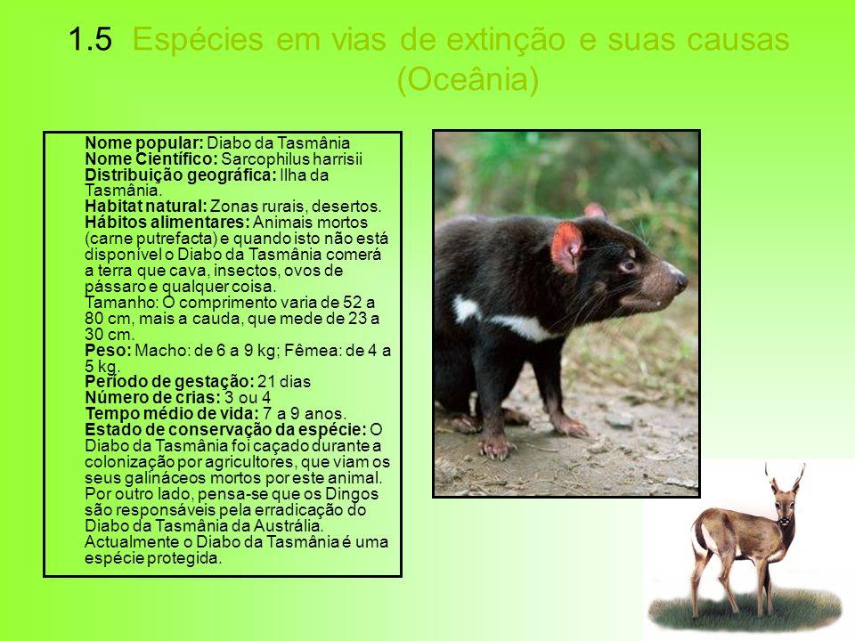 1.5 Espécies em vias de extinção e suas causas (Oceânia) Nome popular: Diabo da Tasmânia Nome Científico: Sarcophilus harrisii Distribuição geográfica
