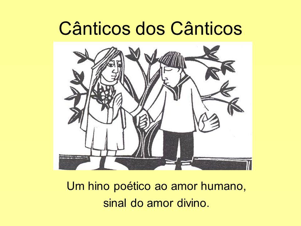 Cânticos dos Cânticos Um hino poético ao amor humano, sinal do amor divino.