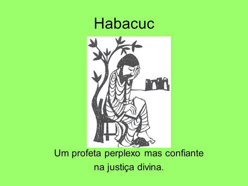 Habacuc Um profeta perplexo mas confiante na justiça divina.