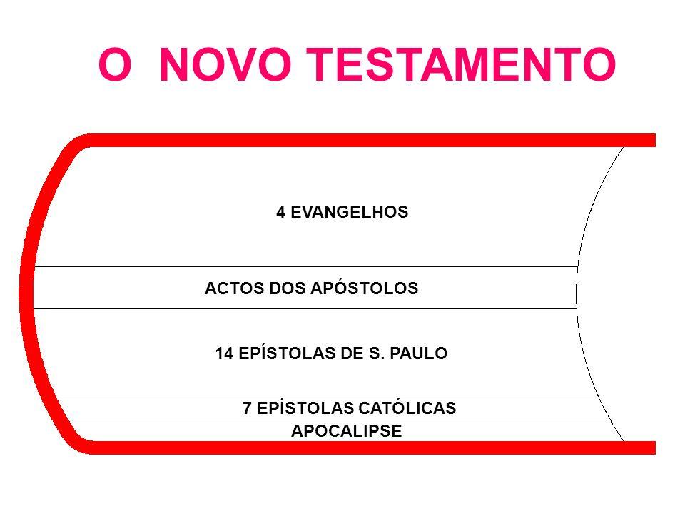 O NOVO TESTAMENTO 4 EVANGELHOS ACTOS DOS APÓSTOLOS 14 EPÍSTOLAS DE S. PAULO 7 EPÍSTOLAS CATÓLICAS APOCALIPSE