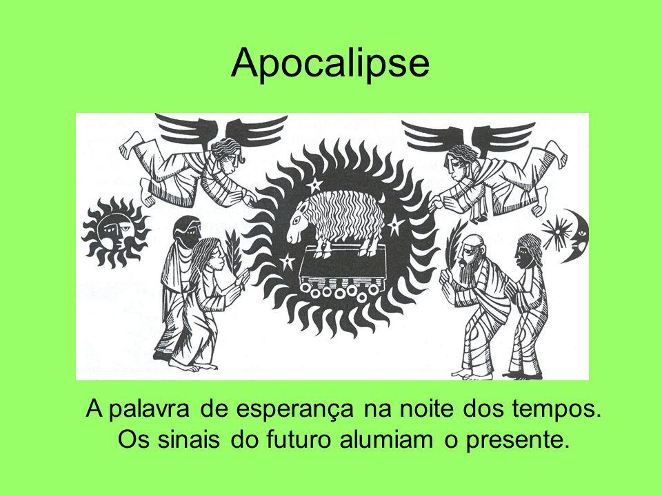Apocalipse A palavra de esperança na noite dos tempos. Os sinais do futuro alumiam o presente.