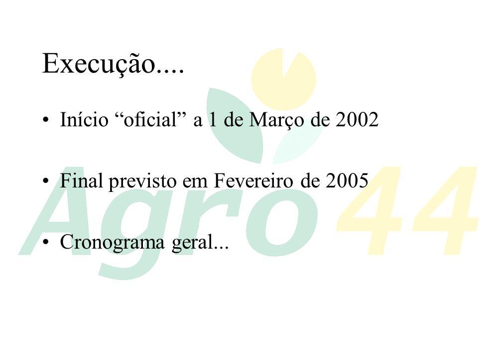 Execução.... Início oficial a 1 de Março de 2002 Final previsto em Fevereiro de 2005 Cronograma geral...