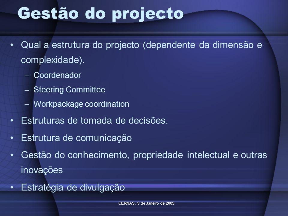 CERNAS, 9 de Janeiro de 2009 Gestão do projecto Qual a estrutura do projecto (dependente da dimensão e complexidade). –Coordenador –Steering Committee
