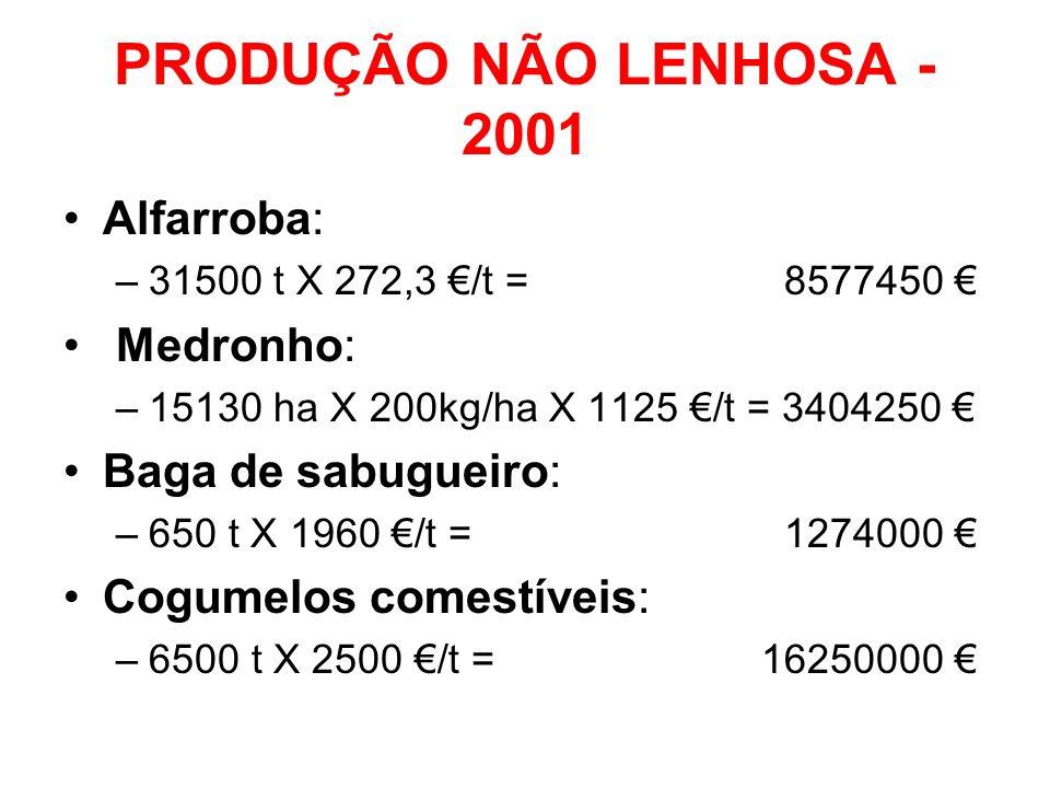 PRODUÇÃO NÃO LENHOSA - 2001 Alfarroba: –31500 t X 272,3 /t = 8577450 Medronho: –15130 ha X 200kg/ha X 1125 /t = 3404250 Baga de sabugueiro: –650 t X 1