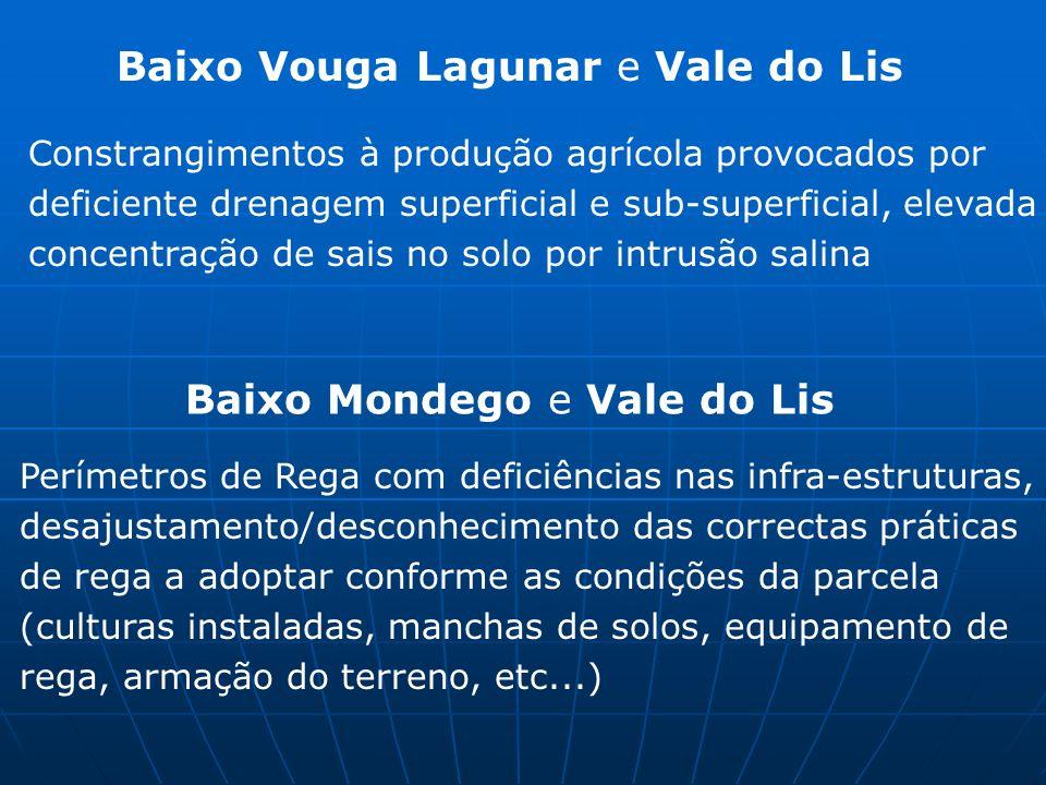 Baixo Vouga Lagunar e Vale do Lis Constrangimentos à produção agrícola provocados por deficiente drenagem superficial e sub-superficial, elevada conce