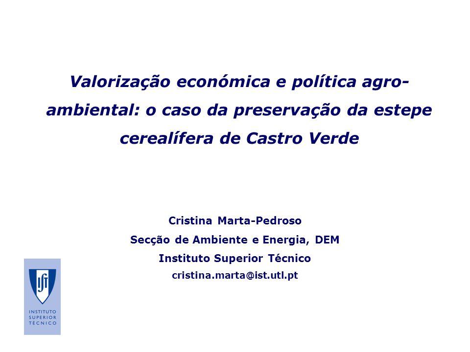 Valorização económica e política agro- ambiental: o caso da preservação da estepe cerealífera de Castro Verde Cristina Marta-Pedroso Secção de Ambient