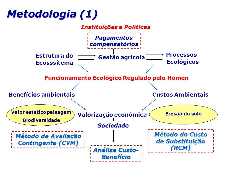 Metodologia (1) Instituições e Políticas Processos Gestão agrícola Valorização económica Estrutura do Sociedade Benefícios ambientais Custos Ambientai
