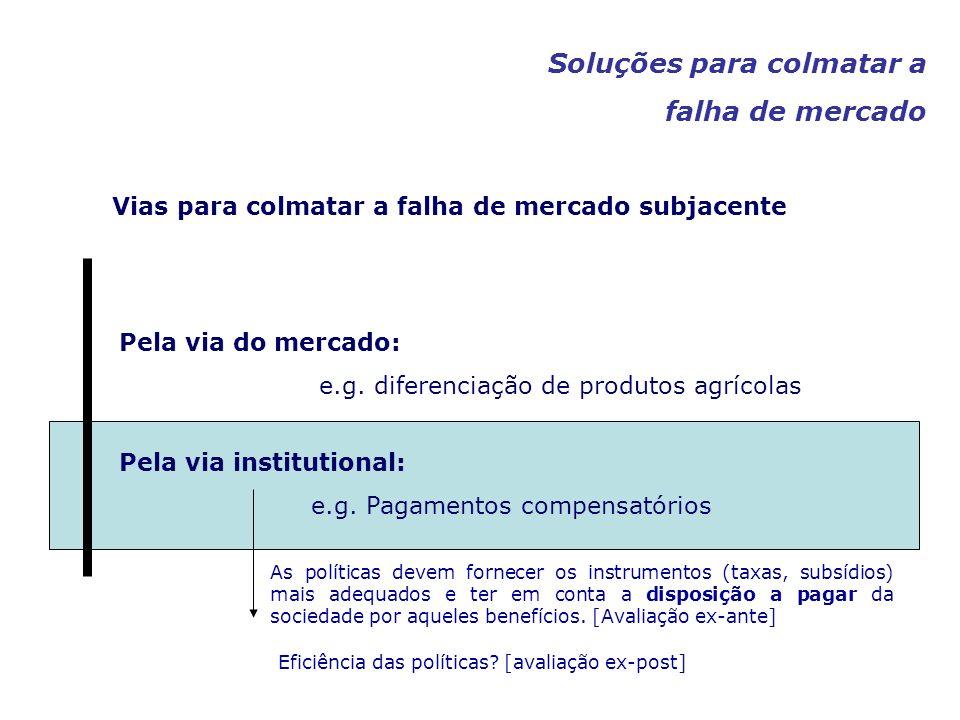 Pela via do mercado: e.g. diferenciação de produtos agrícolas Pela via institutional: e.g. Pagamentos compensatórios Vias para colmatar a falha de mer